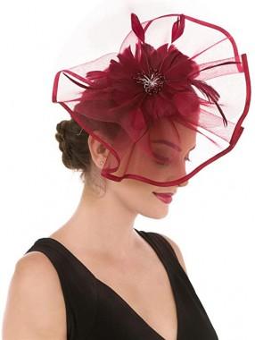 Burgunder Feather Mesh Fascinators Hut Blume Feather Net Mesh Kentucky Derby Tea Party Kopfbedeckung mit Haarspange und Haarband für Frauen